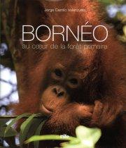 Valenzuela - Bornéo